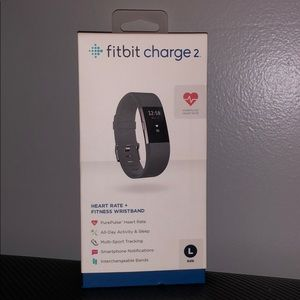 Jewelry - Fitbit Charge 2 : Large Wristband